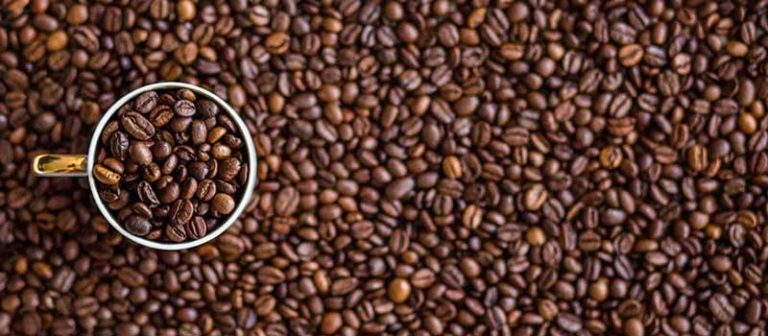 Guide on Where Does Coffee Come From