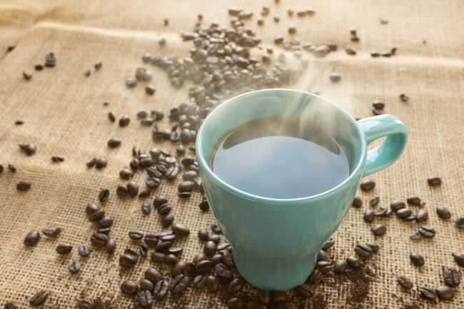 coffee liberica