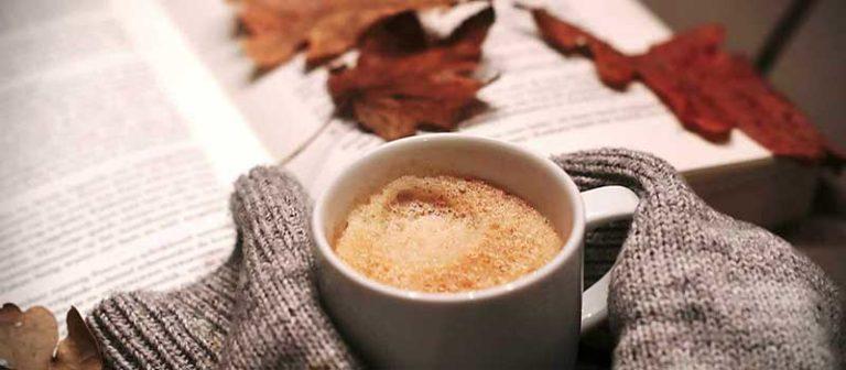 List of the Best Mug Warmer