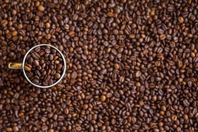 Overview of the Best Coffee Beans