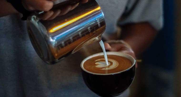 The Best Bunn Coffee Maker Reviews