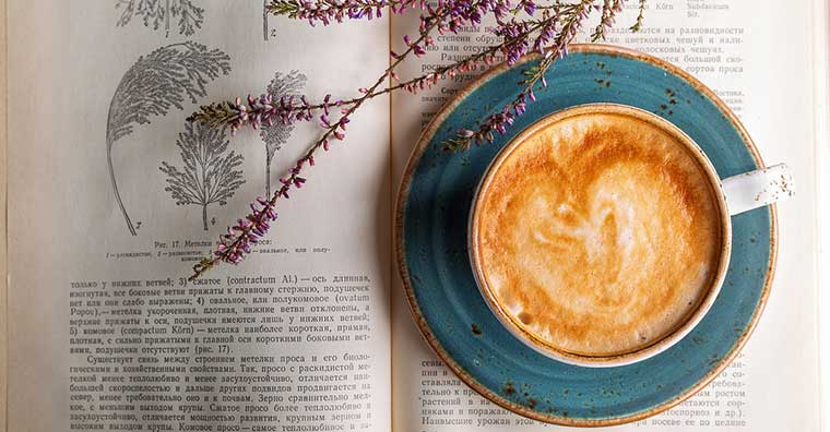 Best Tips for Lavender Coffee