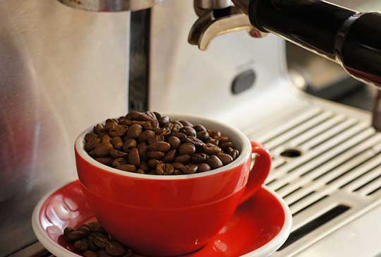 Learn How to Use Cuisinart Coffee Maker