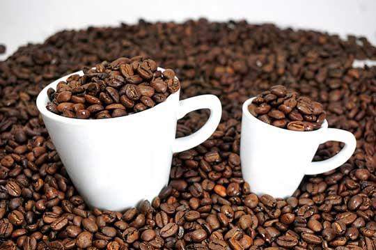 Espresso vs. Coffee Facts