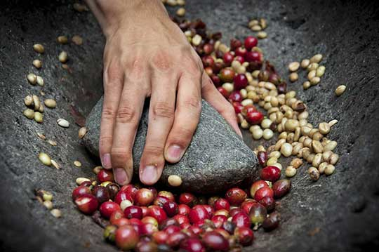 Use A Hammer to Grind Coffee Bean