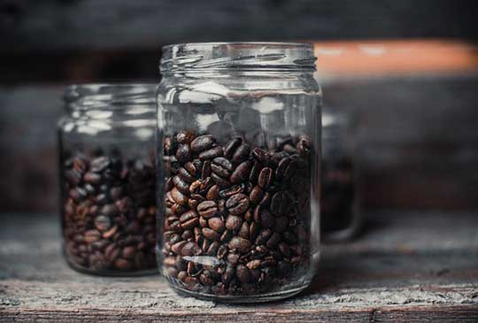 Where do coffee beans come from facts